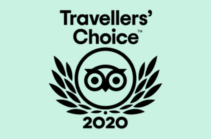 Travellers' Choice 2020 logo
